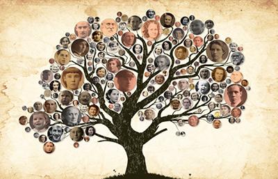 [PORTABLE] Family Tree Builder v8.0.0.8500 - Ita