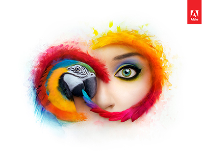 Adobe Creative Cloud Collection CC 2019 v1.1 64 Bit - Ita