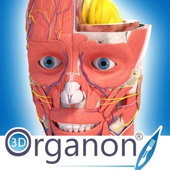 3D Organon Anatomy DOWNLOAD PORTABLE ENG