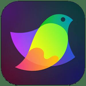 [MAC] Amadine 1.1.1 macOS - ENG
