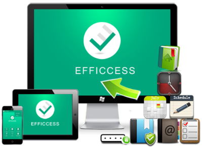 Efficient Efficcess 5.60 Build 547 - ITA