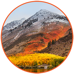 macOS High Sierra v10.13.6 (17G65) VMware & VirtualBox - Ita
