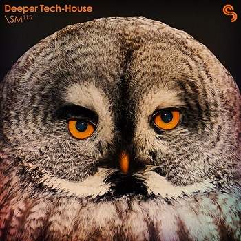Sample Magic Deeper Tech-House