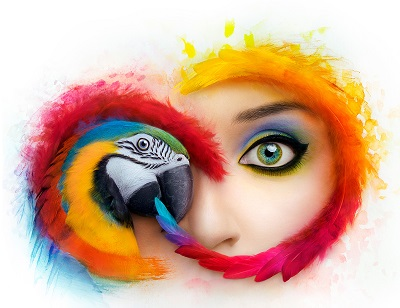 Adobe Creative Cloud Collection CC 2019 64 Bit (24.03.2019) - ITA