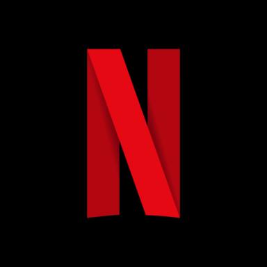 FlexiCam Netflix Video Downloader 1.1.4 - ITA